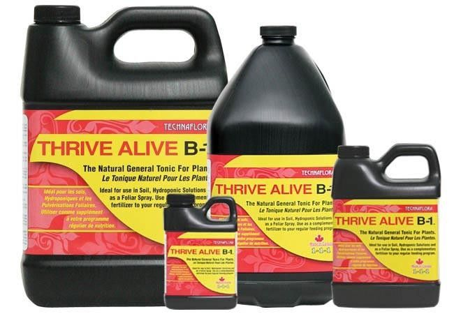 THRIVE ALIVE B1 RED